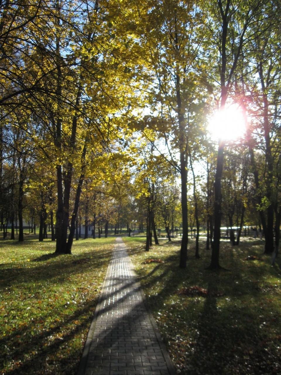 Осень непонимания