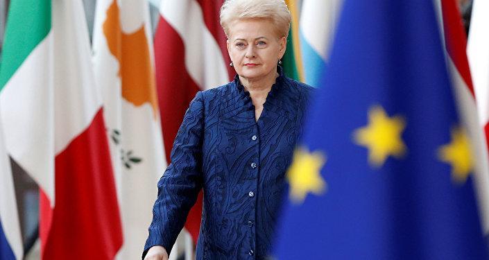 Грибаускайте изменилась в лице после решения Меркель