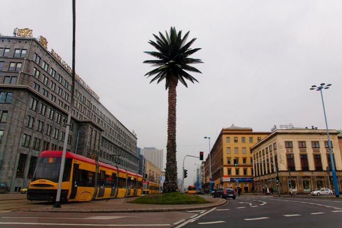 Искусственная пальма в Варшаве.