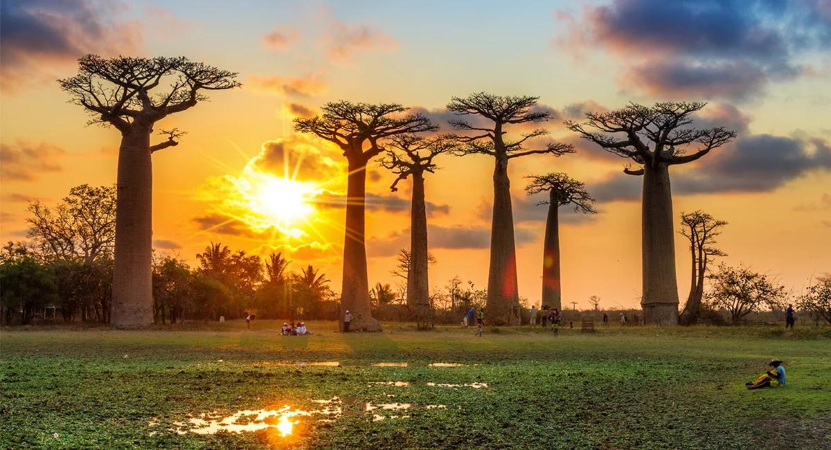 10 самых безопасных стран Африки