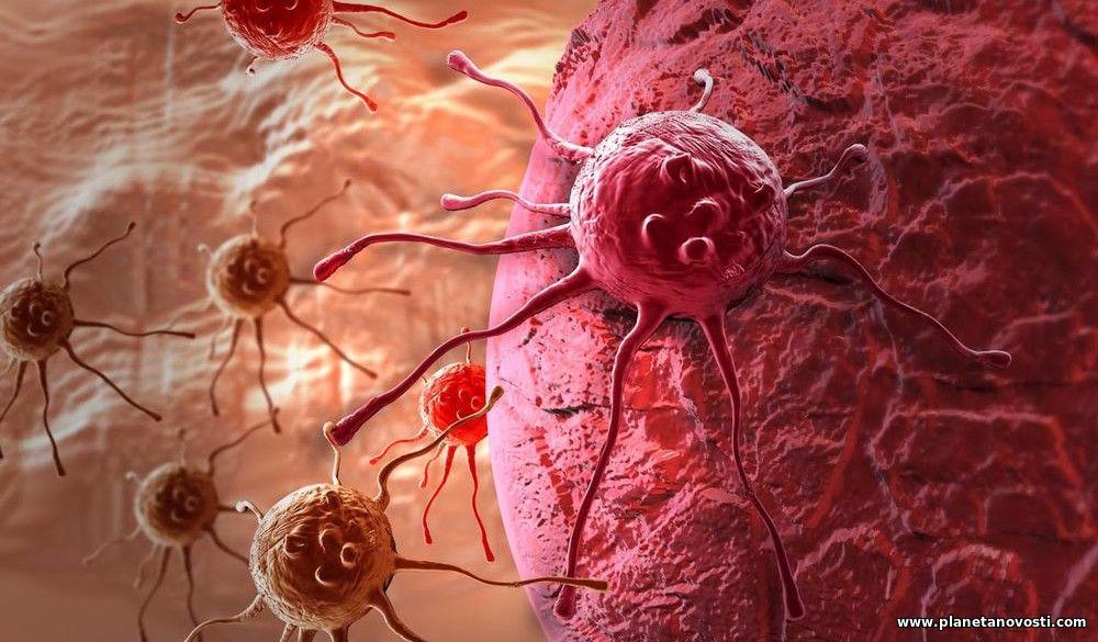 Рак будет побежден: ученые сделали новое открытие