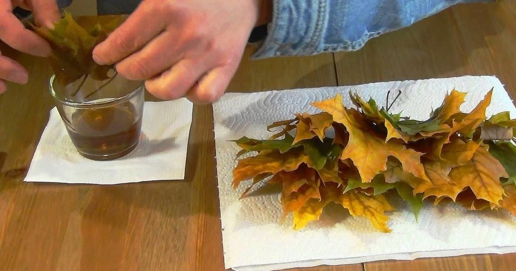Простейший способ хранения листьев, о котором мало кто знает