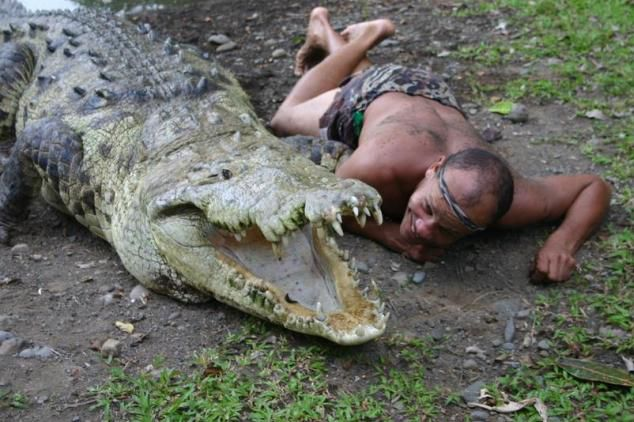 Самый ласковый крокодил 3