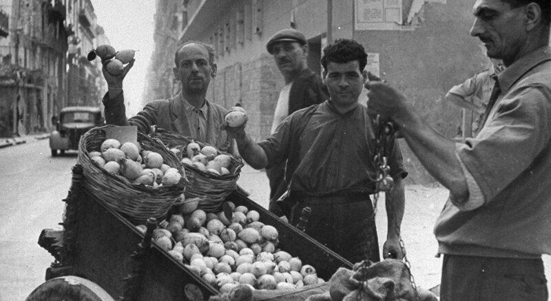 Битва за урожай, или Как сицилийская мафия выросла из лимонной косточки-10 фото-
