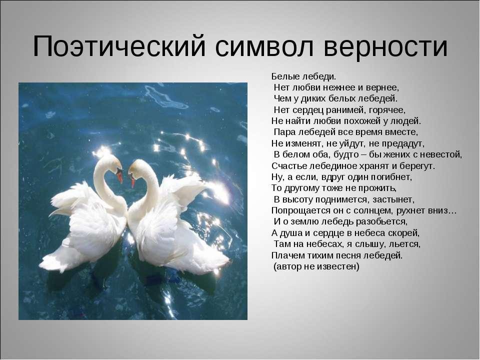 ЛЕБЕДИНАЯ ВЕРНОСТЬ.