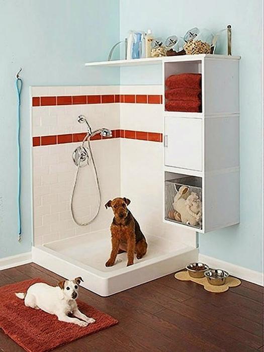 Душевая кабинка для собак.
