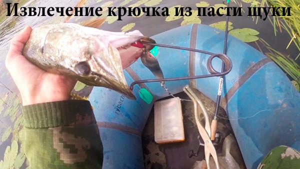 Извлечение крючка из пасти щуки
