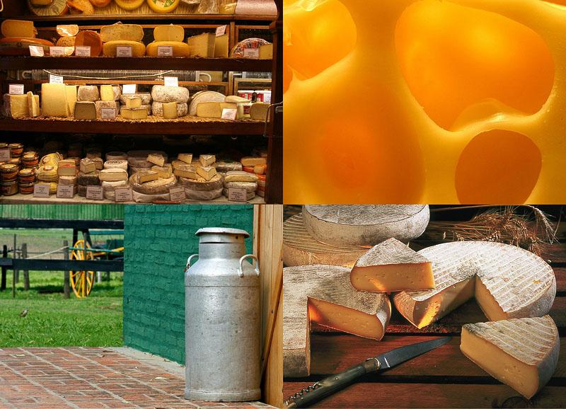 BIGPIC115 10 фактов о сыре