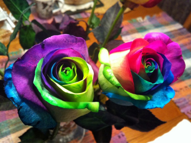 Цветик-семицветик из домашней лаборатории