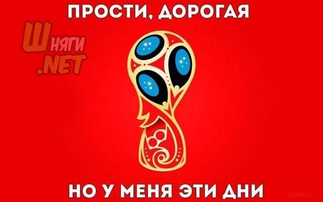 Па-а-а-а-а-а-а-анеслась!!! Мундиальный юмор в футбольных картинках