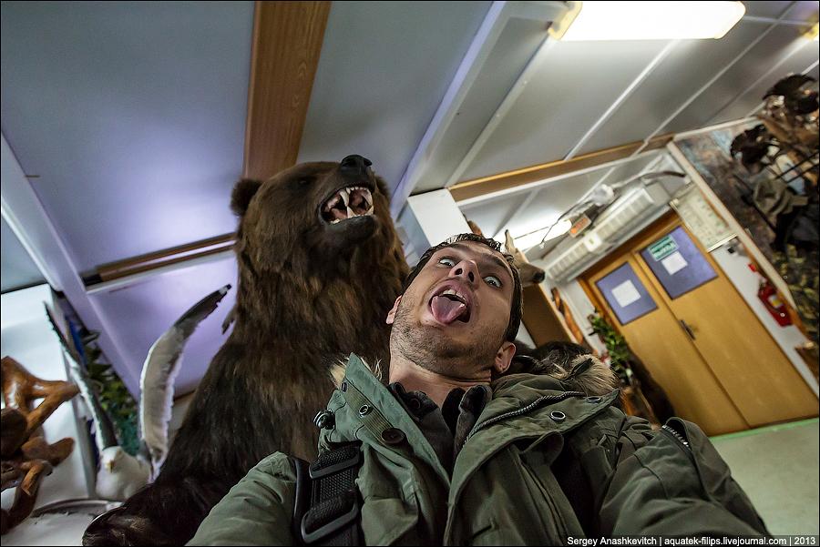 Что делать, если вы встретили медведя. Инструкция в дальневосточном отеле