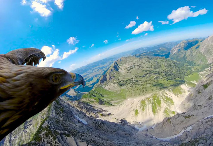 Как выглядят Альпы с высоты полета орла