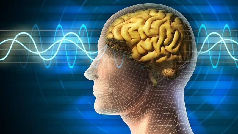 Странности нашего мозга
