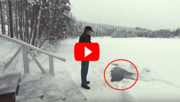Каждое утро мужчина приходит на озеро, чтобы встретиться… Вы сильно удивитесь, с кем!