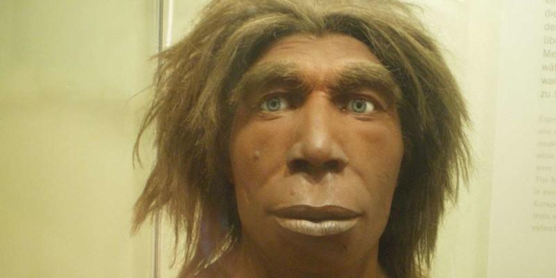 Сложно в это поверить, но до 2,6% вашей ДНК принадлежит неандертальцам днк, люди. исследование, наука, неандертальцы, эволюция