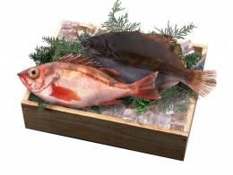 Два рыбных дня в неделю избавят от морщин и рака