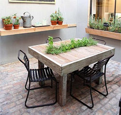 Симбиоз растений и мебели
