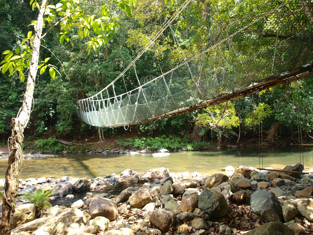 Taman Negara National Park Bridge