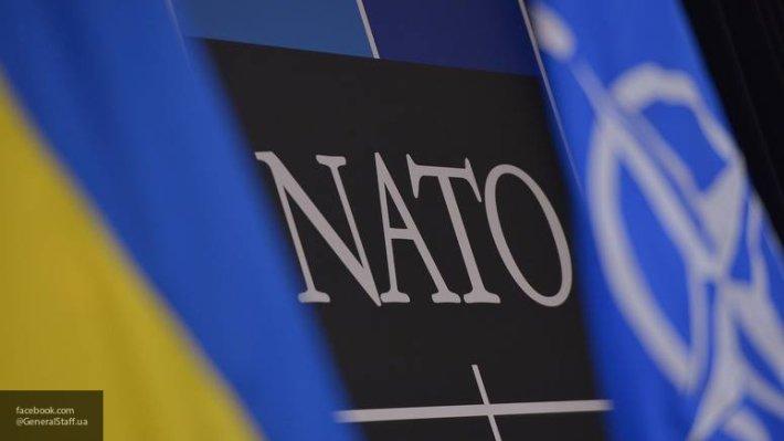 «Вернуть Крым и Донбасс, путь в НАТО и защита ВСУ»: Тимошенко озвучила главные цели на посту президента Украины