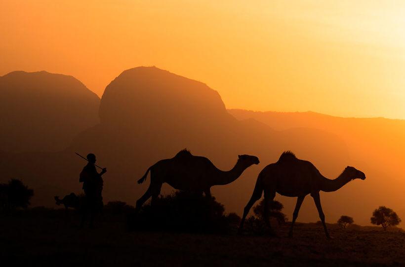 29 фотографий Кении, доказывающих, что Африку надо увидеть своими глазами
