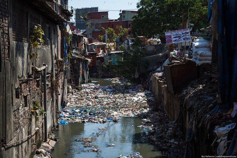 «А на что жаловаться?!» Мумбаи, индия, интересное