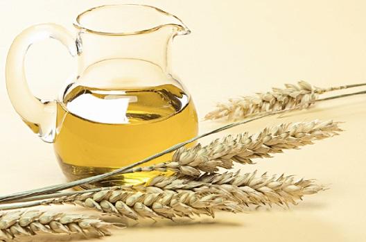Как правильно использовать масло зародышей пшеницы