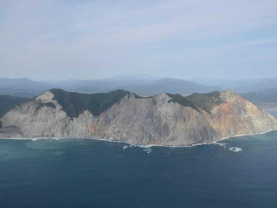 Токсичные водоросли назвали основной причиной загрязнения на Камчатке