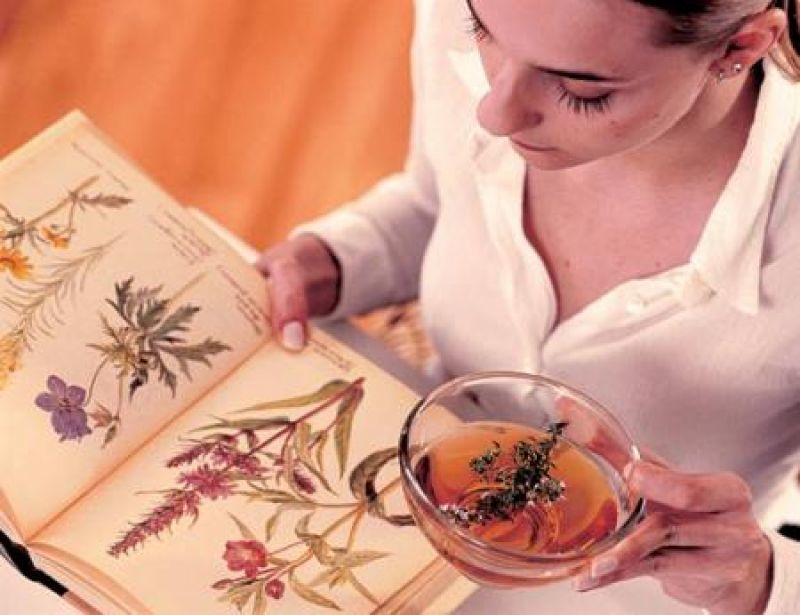 Растения для укрепления иммунной системы