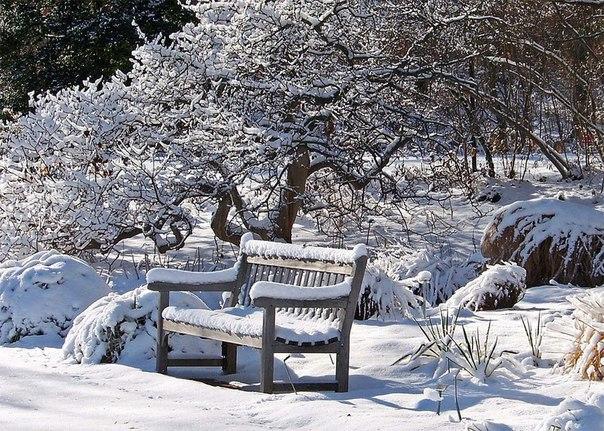 Зима - красавица.