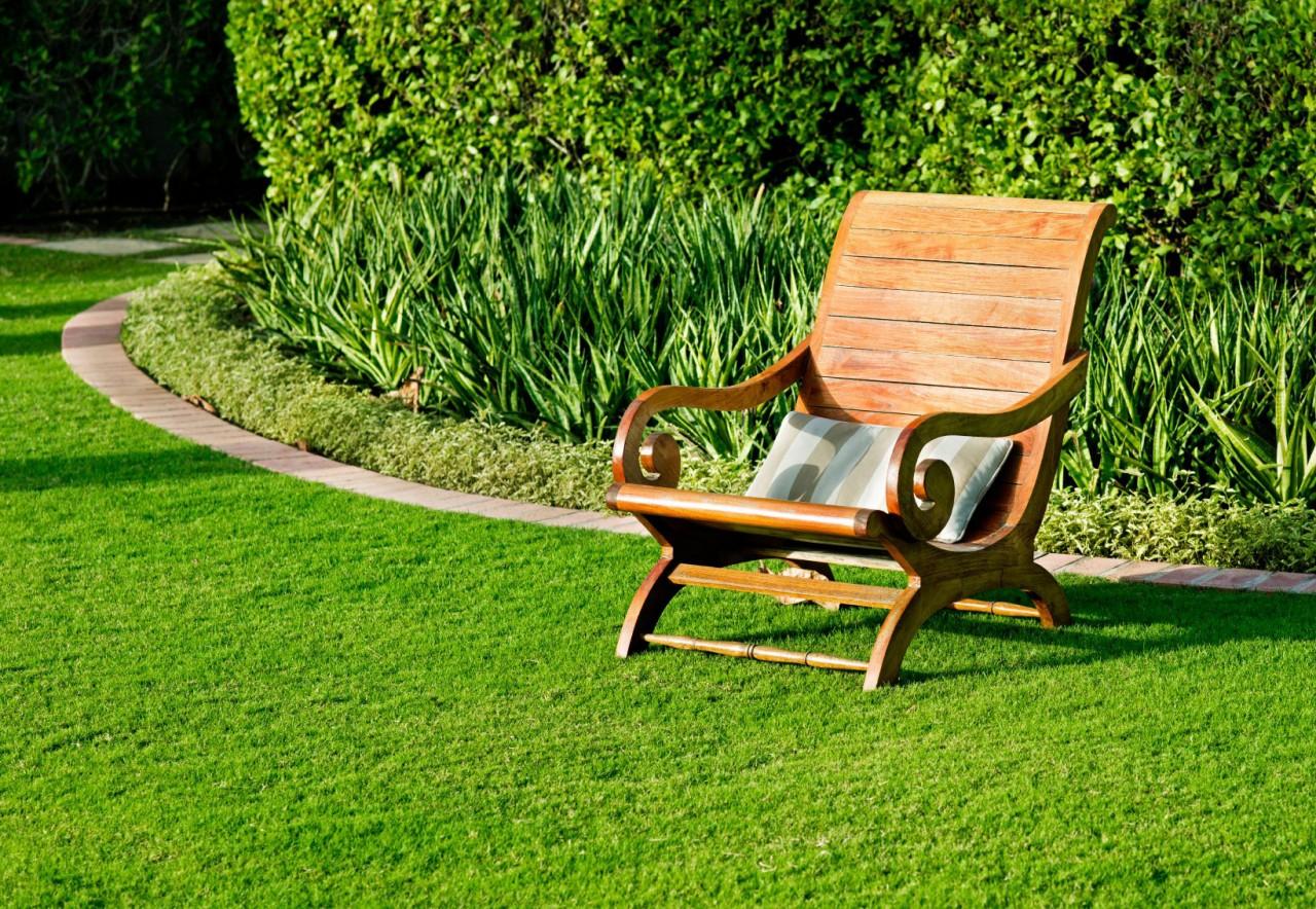Газон на участке: простое создание и озеленение