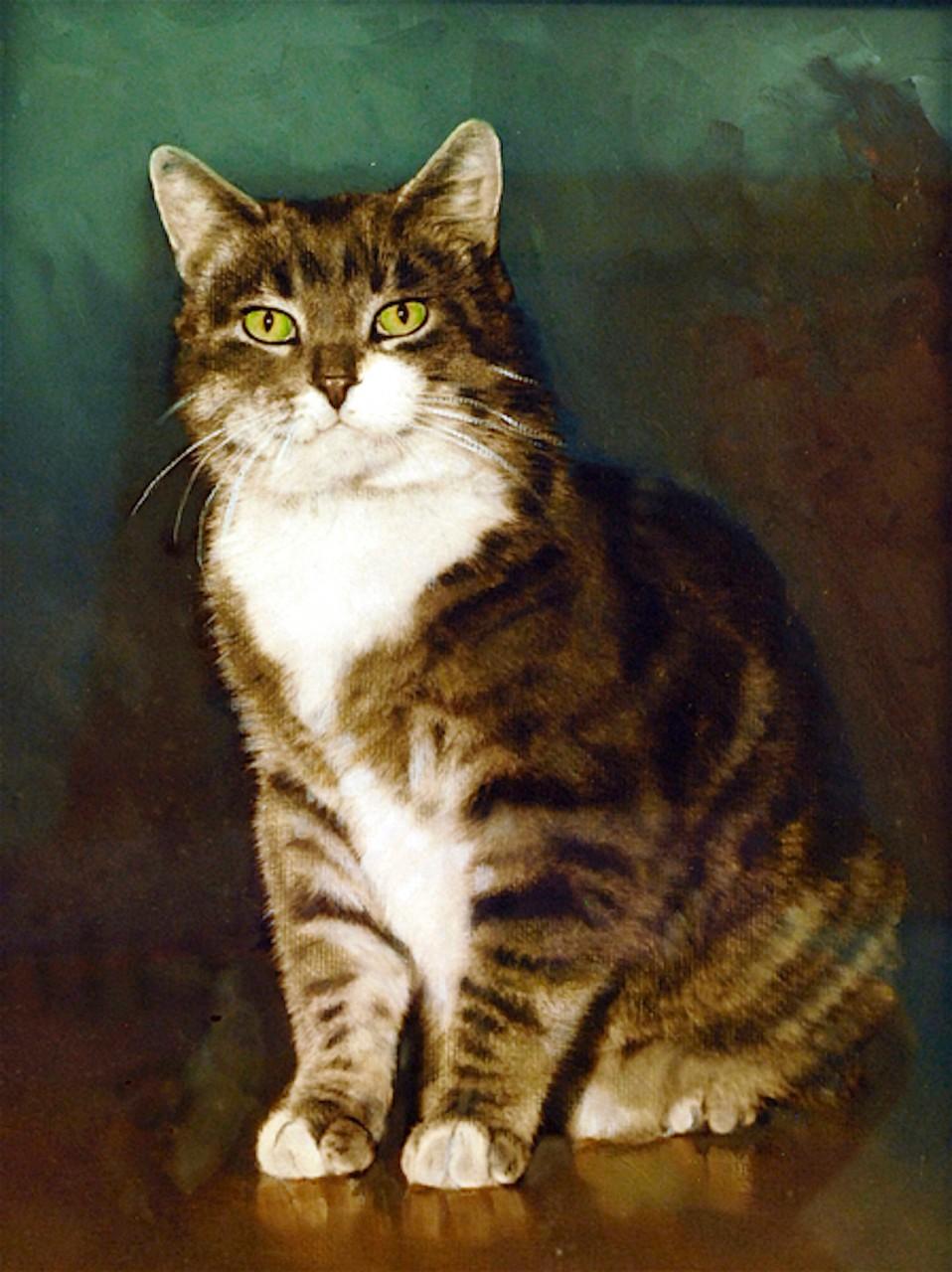Удивительная история о коте, который стал настоящей легендой