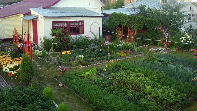 Красивый огород. Фото красивых грядок на даче
