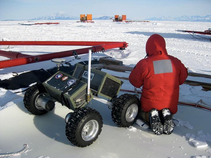 Чтобы отправиться на работу в Антарктиде, каждому человеку необходимо удалить зубы мудрости и аппендикс