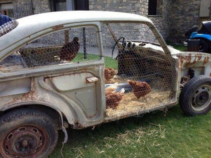 Курятник в кузове старого авто.
