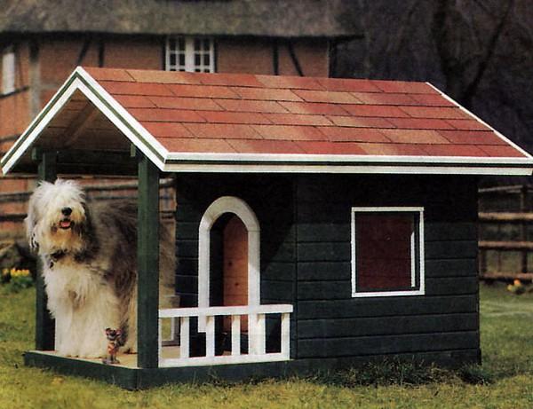 Красивая собачья будка: дом для питомцев – радость для хозяев