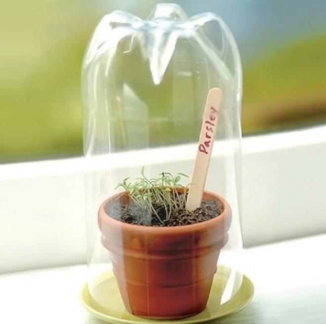 Если нужна тепличка для зелени и рассады