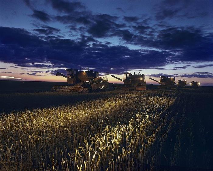 Сельскохозяйственные машины работают днем и ночью в совхозе «Восход» в Северо-Казахстанской области.