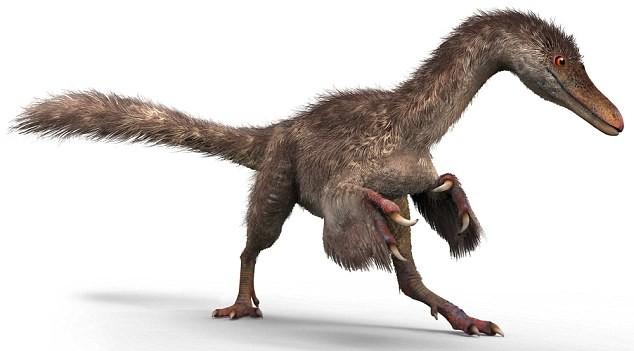 Ученые нашли идеально сохранившиеся перья динозавра