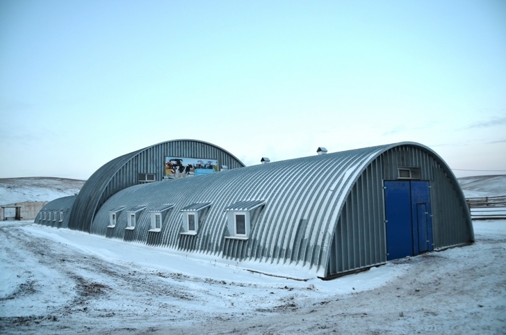 В регионах открываются новые семейные фермы