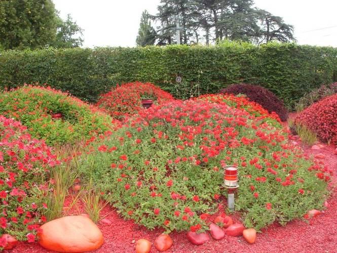 Три правила монохромного сада