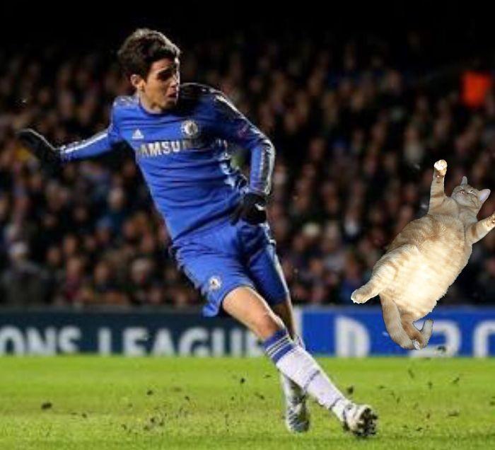 Лучшие моменты матча забавно, коты, творчество, фото, фотожабы, фотошоп, футбол, юмор
