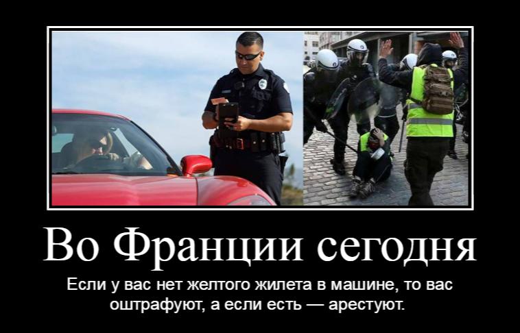 Юмор на злобу дня // Виолетта Крымская
