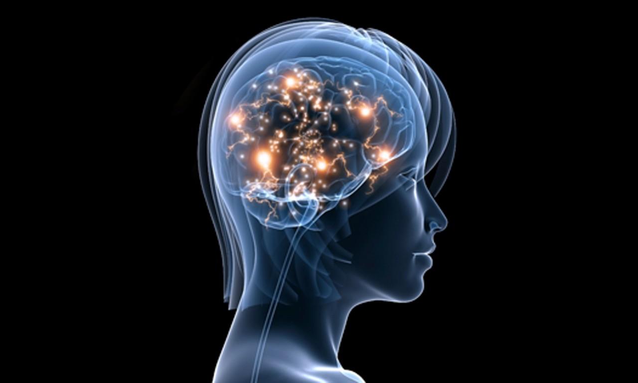 http://psifactor.info/wp-content/uploads/2016/12/iStock_Active-Brain-Resized_v1.jpg