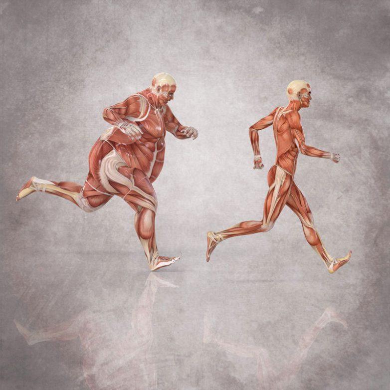 Советы для желающих быстро похудеть
