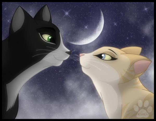 Рисунки коты воители любовь