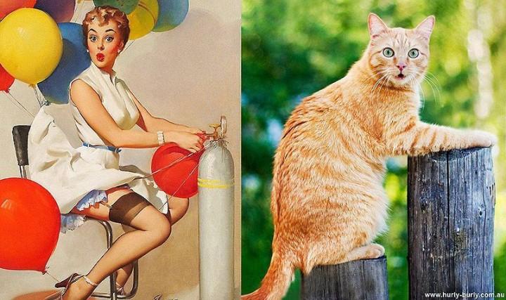 pinupcats19 Кошки и девушки в стиле пинап