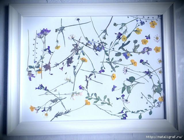 Сушим цветы... в микроволновке