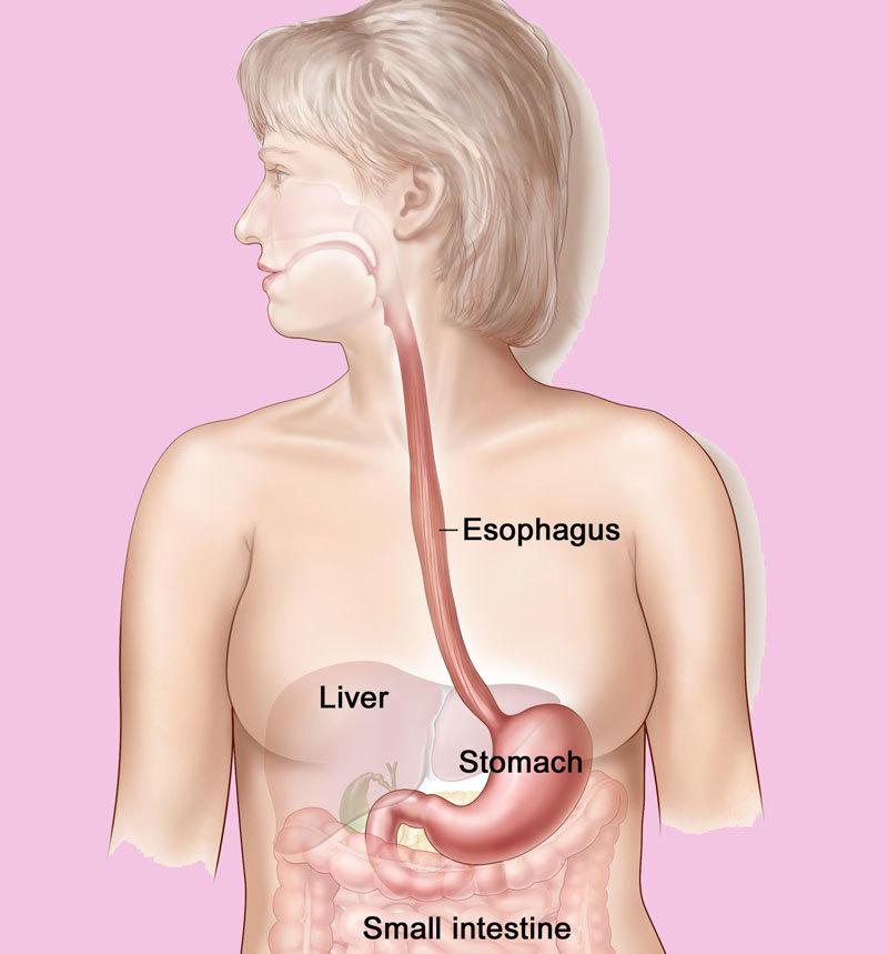 Причины появления непривычного привкуса во рту