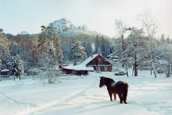 18 удивительных фото природы Сибири