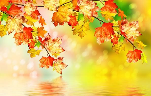 НАСТРОЙ ДНЯ. Осень